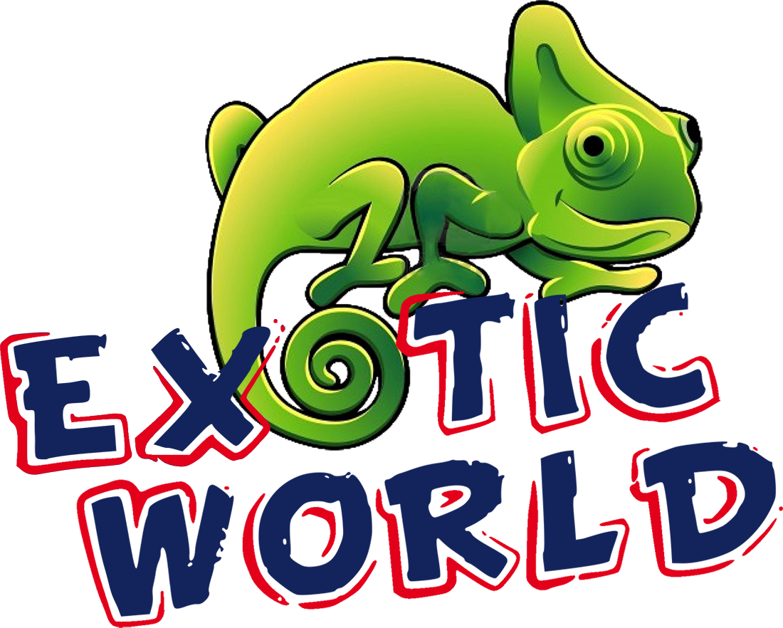 EXOTIC WORLD PNG logo
