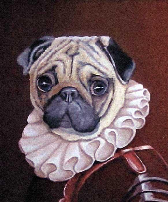 I Ritratti Di Animali Di Eva Marchewska Il Grande Amore Per I Pets